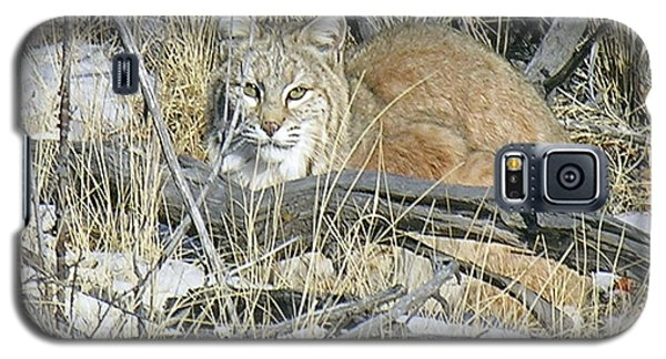 Bobcat Galaxy S5 Case