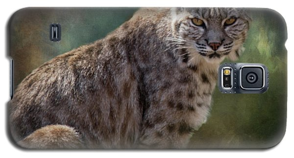 Bobcat Gaze Galaxy S5 Case