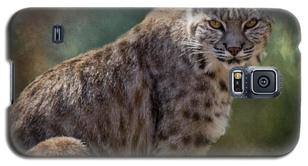 Bobcat Gaze Galaxy S5 Case