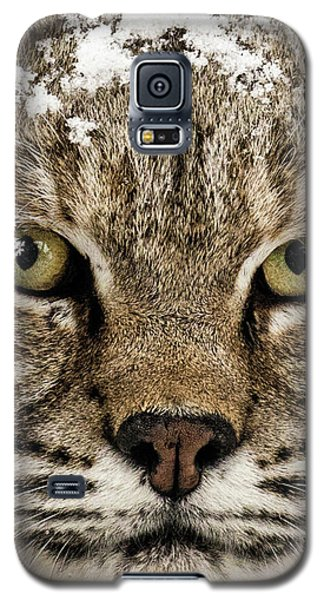 Bobcat Whiskers Galaxy S5 Case