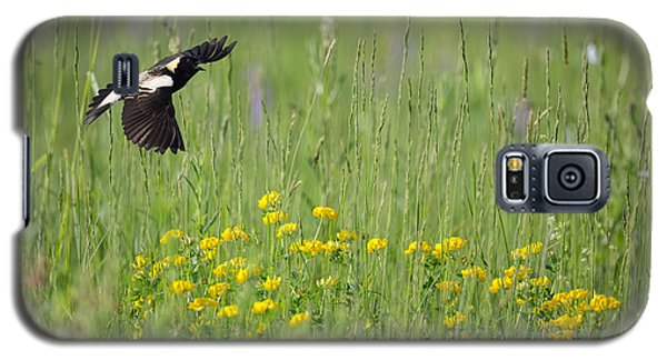 Galaxy S5 Case featuring the photograph Bobolink In Paradise by Bill Wakeley