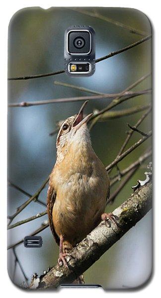 Bobolink Singing Galaxy S5 Case