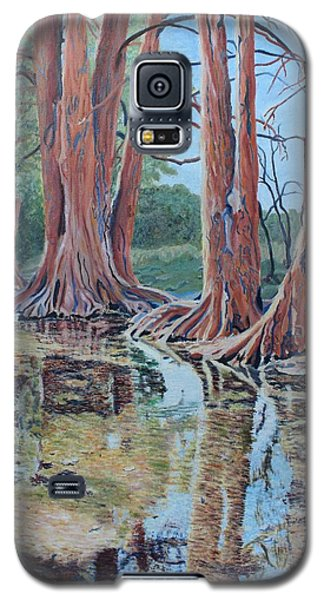 Boerne River Scene Galaxy S5 Case