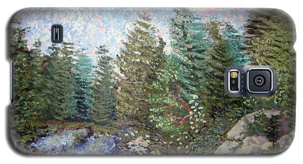 Bog River Morning Galaxy S5 Case by Denny Morreale