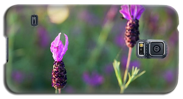 Galaxy S5 Case featuring the photograph Bokehlicious Bloom by Lora Lee Chapman
