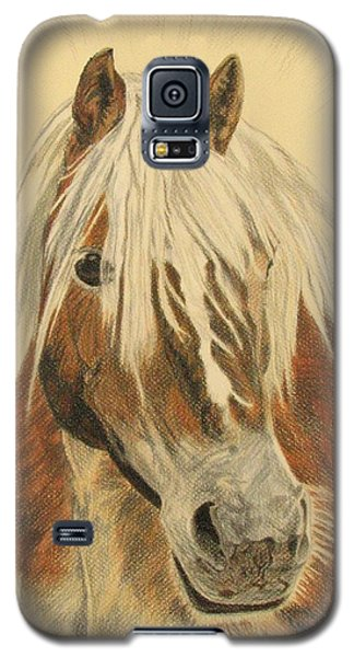 Bolero Galaxy S5 Case by Melita Safran