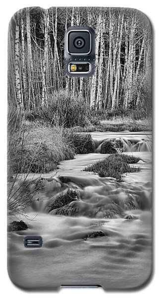 Bonanza Streaming Galaxy S5 Case by James BO Insogna