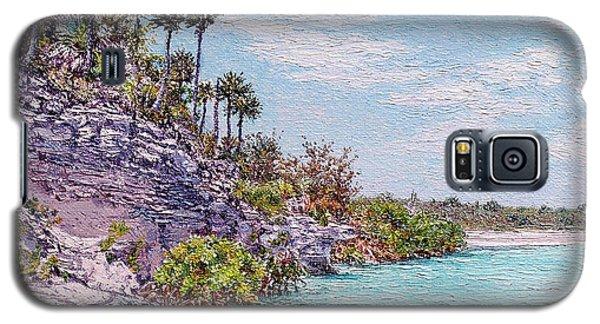 Bonefish Creek Galaxy S5 Case
