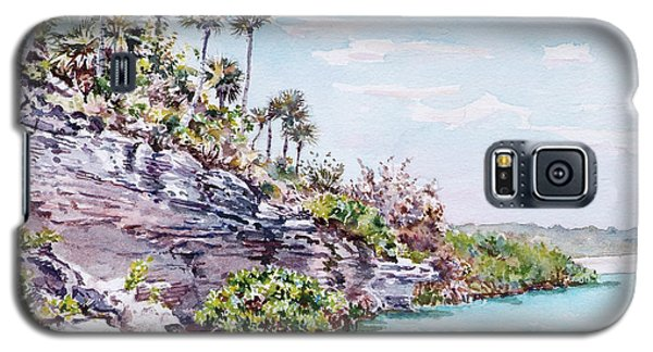 Bonefish Creek Watercolour Study Galaxy S5 Case