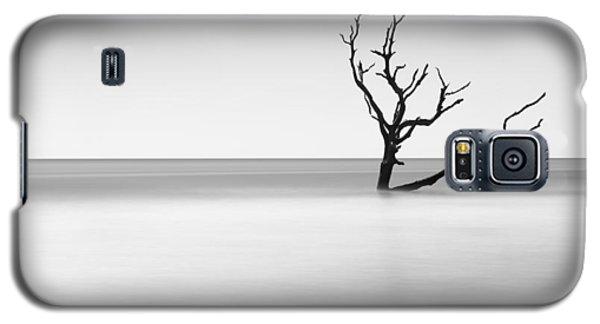 Bull Galaxy S5 Case - Boneyard Beach I by Ivo Kerssemakers