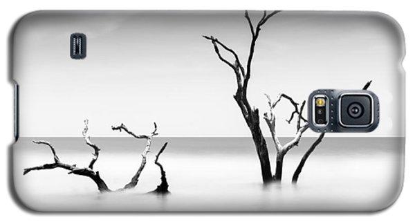 Bull Galaxy S5 Case - Boneyard Beach Viii by Ivo Kerssemakers