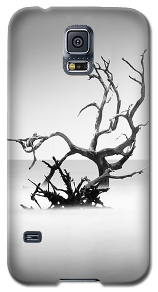 Bull Galaxy S5 Case - Boneyard Beach X by Ivo Kerssemakers