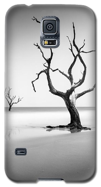 Bull Galaxy S5 Case - Boneyard Beach Xiii by Ivo Kerssemakers