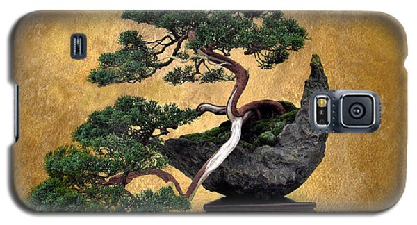 Bonsai 3 Galaxy S5 Case by Jessica Jenney