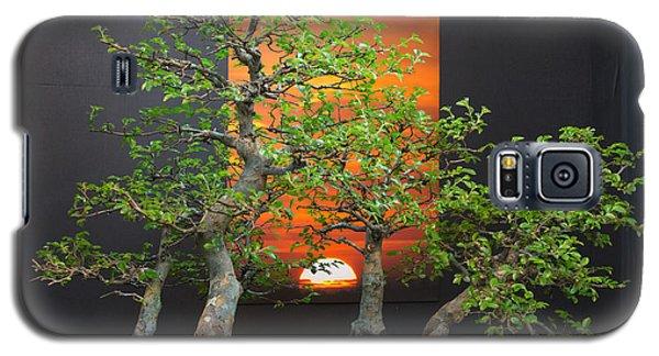 Bonsai Art Galaxy S5 Case