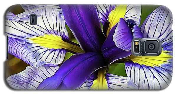 Boothbay Beauty Galaxy S5 Case
