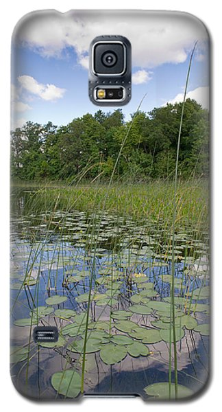 Borden Lake Lily Pads Galaxy S5 Case