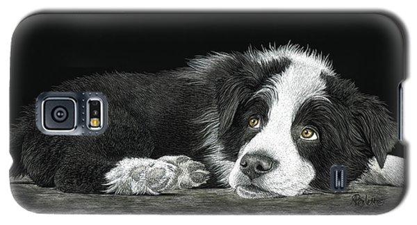 Border Collie Pup For Limited Items Galaxy S5 Case