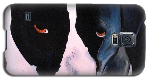 Border Collie- Sasha Galaxy S5 Case by Laura  Grisham