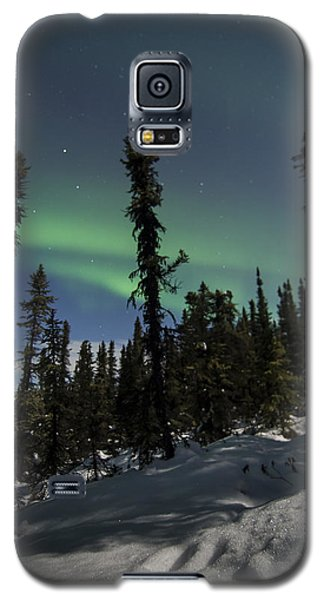 Boreal Forest Essence Galaxy S5 Case