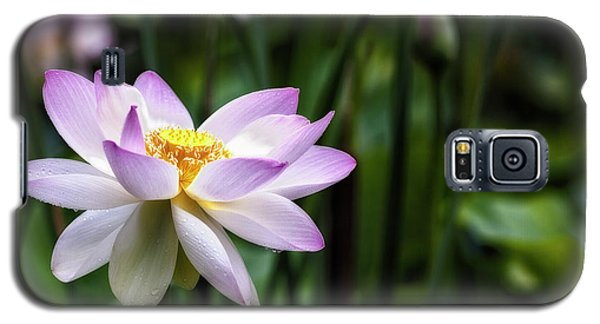 Galaxy S5 Case featuring the photograph Born Of The Water Original by Edward Kreis
