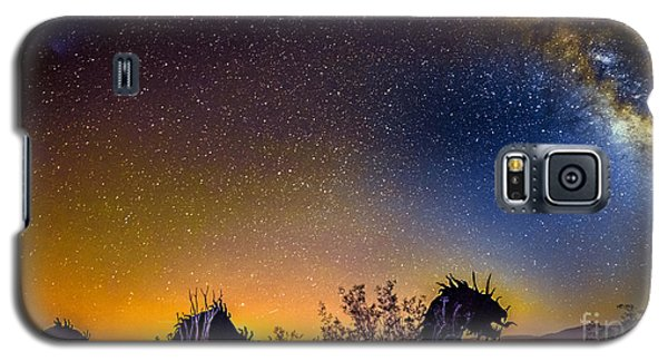 Borrego Springs Dragon Galaxy S5 Case
