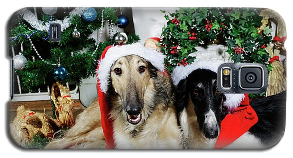 Galaxy S5 Case featuring the photograph Borzoi Puppies Wishing A Merry Christmas by Christian Lagereek