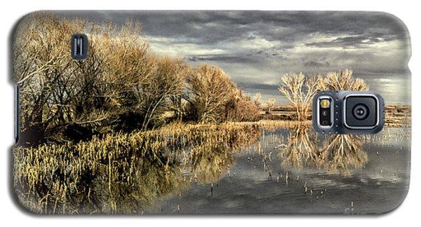 Bosque Dusk Galaxy S5 Case