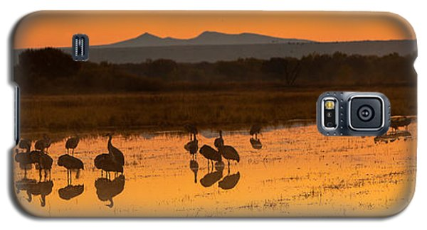 Bosque Sunrise Galaxy S5 Case by Alan Vance Ley