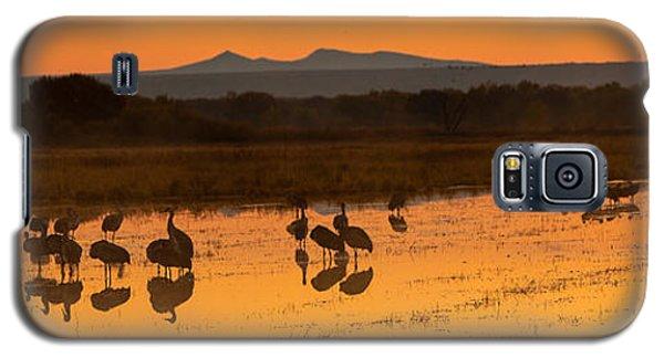 Bosque Sunrise Galaxy S5 Case