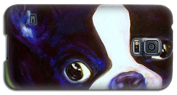 Boston Terrier - Elwood Galaxy S5 Case by Laura  Grisham