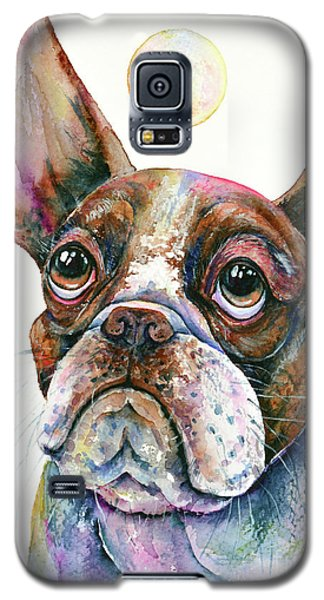 Galaxy S5 Case featuring the painting Boston Terrier Watching A Soap Bubble by Zaira Dzhaubaeva