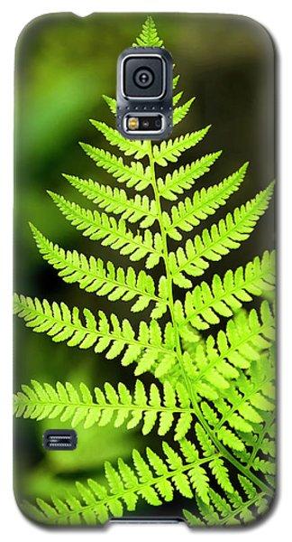 Botanical Fern Galaxy S5 Case