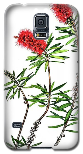 Galaxy S5 Case featuring the painting Bottle Brush by Heidi Kriel