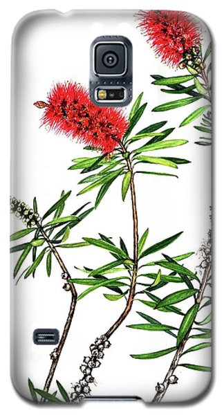Bottle Brush Galaxy S5 Case