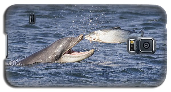 Bottlenose Dolphin Eating Salmon - Scotland  #36 Galaxy S5 Case