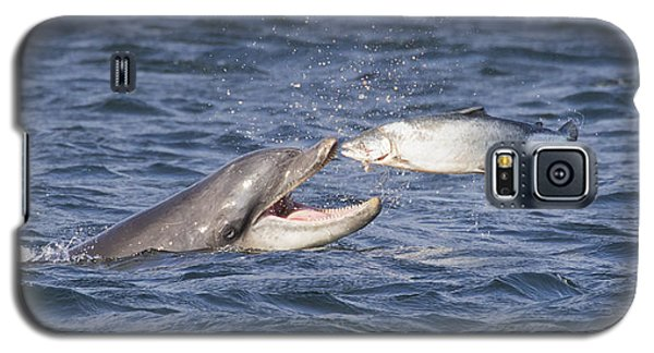 Bottlenose Dolphin Eating Salmon - Scotland  #36 Galaxy S5 Case