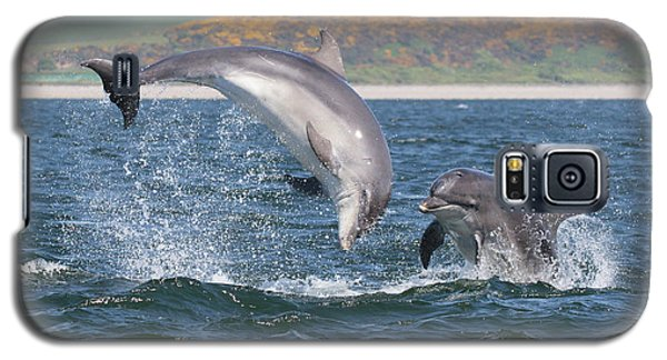 Bottlenose Dolphin - Moray Firth Scotland #49 Galaxy S5 Case