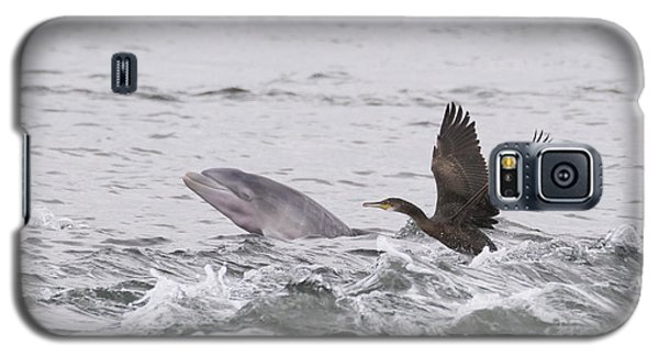 Baby Bottlenose Dolphin - Scotland #10 Galaxy S5 Case