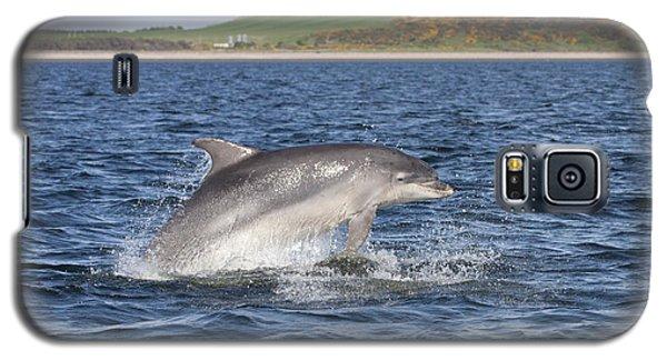 Bottlenose Dolphin - Scotland  #32 Galaxy S5 Case