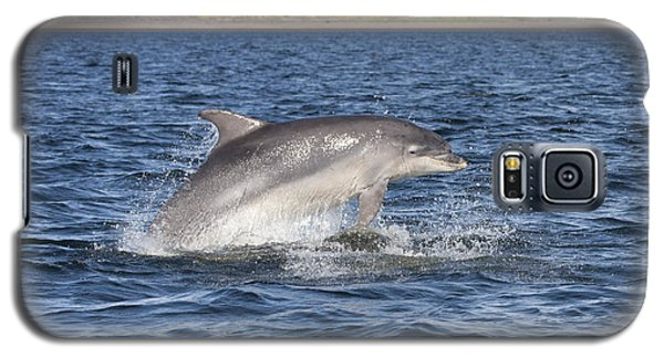 Bottlenose Dolphin - Scotland  #32 Galaxy S5 Case