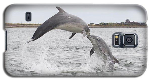 Bottlenose Dolphins - Scotland #1 Galaxy S5 Case