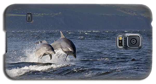 Bottlenose Dolphins Leaping - Scotland  #37 Galaxy S5 Case