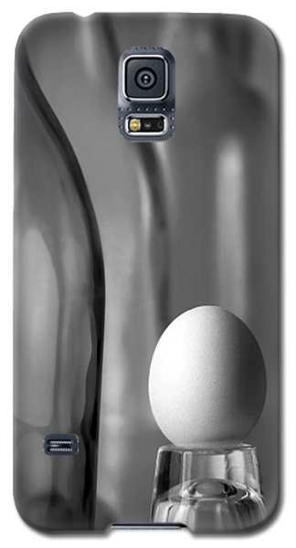 Galaxy S5 Case featuring the photograph Bottles And Egg by Joe Bonita
