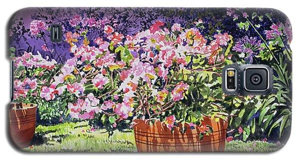 Beverly Hills Galaxy S5 Case -  Bougainvillea Flower Pots Beverly Hills by David Lloyd Glover