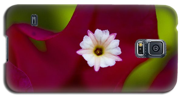 Bougainvillea Galaxy S5 Case