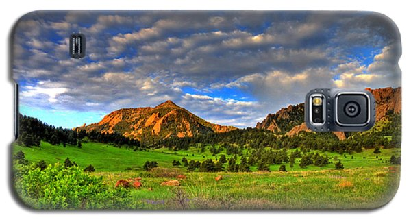 Boulder Spring Wildflowers Galaxy S5 Case by Scott Mahon