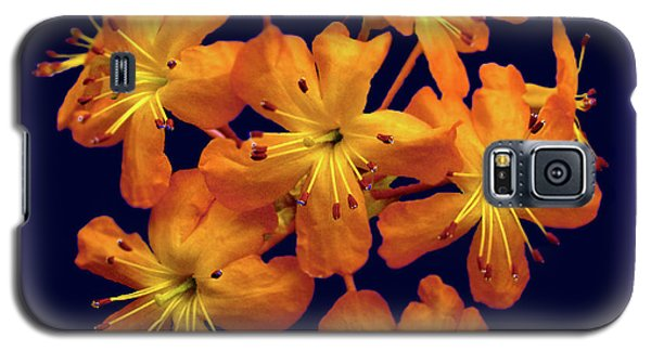 Galaxy S5 Case featuring the digital art Bouquet In A Box by Donna Brown