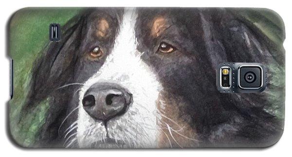 Bouvier Bernois Galaxy S5 Case by Annie Poitras