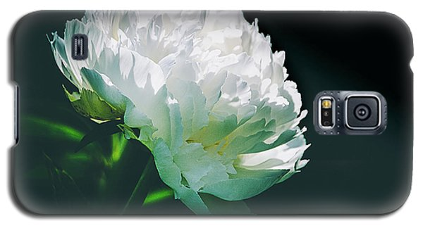 Galaxy S5 Case featuring the photograph Bowl Of Cream Peony by Julie Palencia